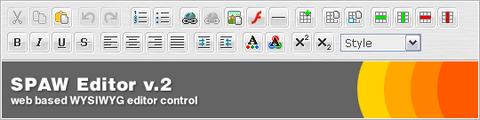 Web Based WYSIWYG Editor Control