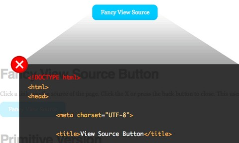view-source-button