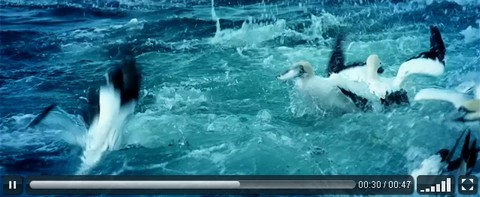 VideoJS – HTML5 Video Player with Pure CSS Skins