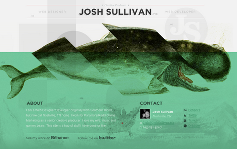Portfolio Website 5