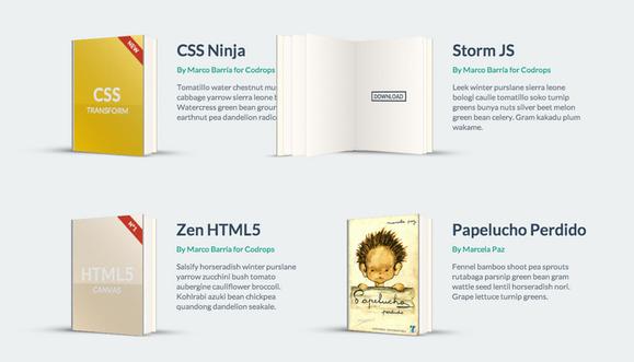 css3-books