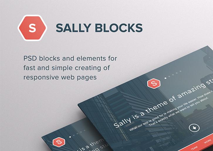 sally-blocks