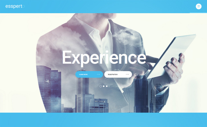 business-expert-wordpress-theme
