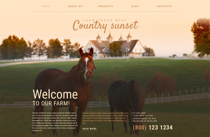 country-sunset-wordpress-theme